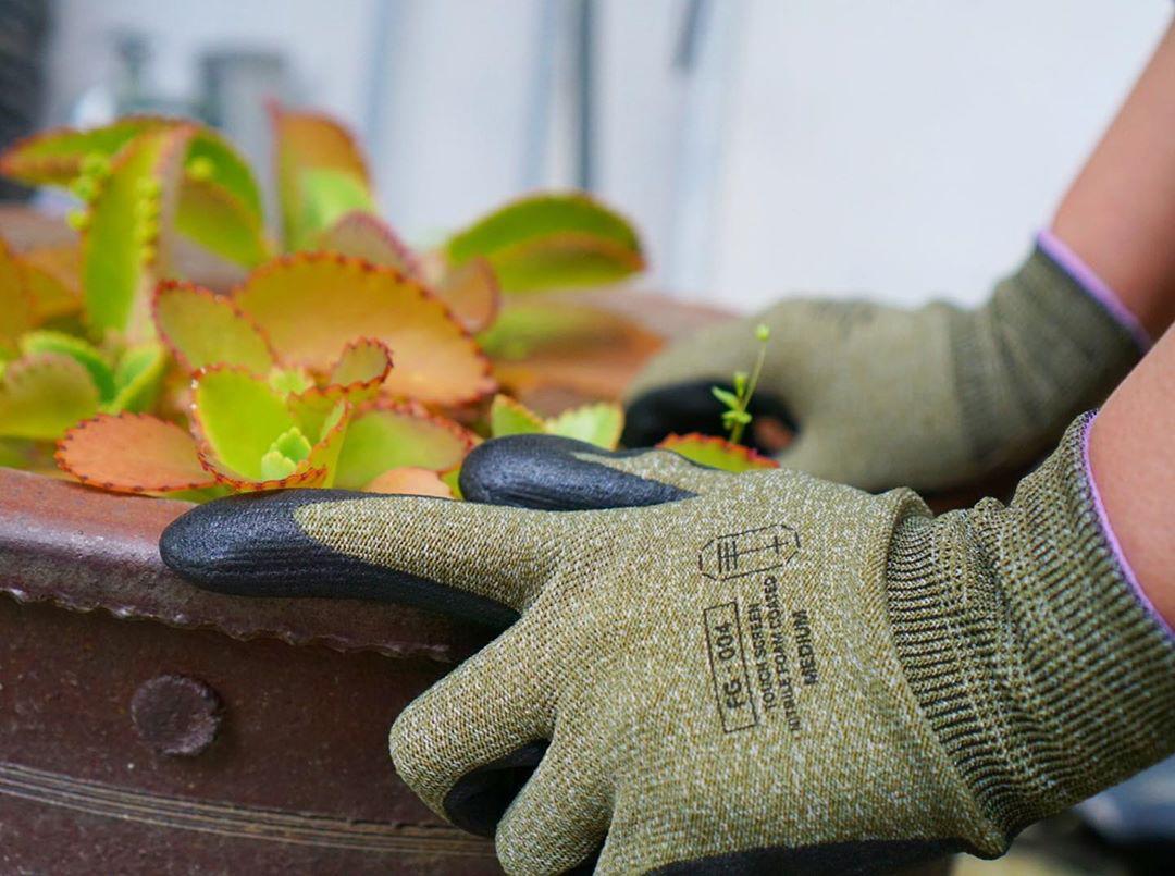 もとは、大工や配送員といった、指先に力と正確さを求める、プロ向けの作業用手袋です。スマホを触れる。ネジもつまめる抜群のフィット感で、指先がスイスイ動く「作業用手袋」|workers gloves(ワーカーズグローブ)