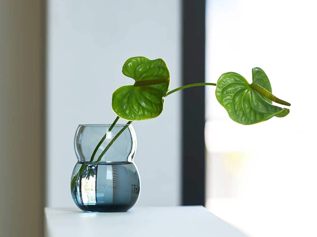 独特なフォルムは、フラワーベースとして植物を飾ってもいいバランスに。持ちやすさ、使いやすさ抜群。丸みとくびれのあるお洒落なデザイン|双円(そうえん)のグラス