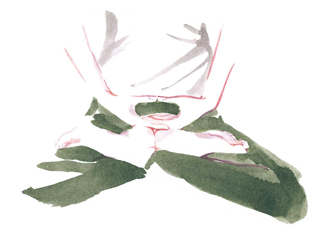 (2)マインドフルネスを習慣にし、日々のパフォーマンスを上げる。リビング坐禅のはじめ方|坐禅蒲団(坐蒲)・瞑想用クッション| ZAF(ザフ)