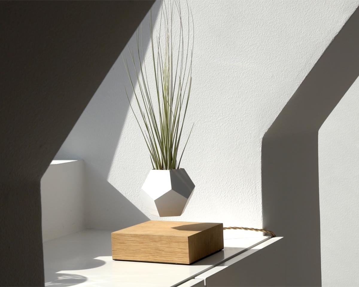 スウェーデンの美しいミニマムデザインの磁力で宙に浮き回転する植物プランター | LYFE