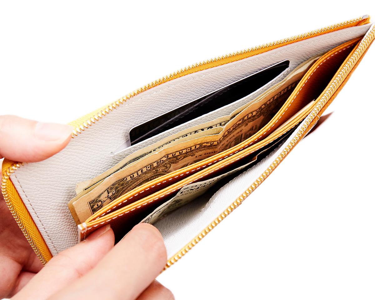 必要十分が計算された硬貨入れ。無理なくミニマムを極めた、「薄い財布」の傑作(長財布、二つ折り財布、パスケース、カードホルダー) ALBERTE
