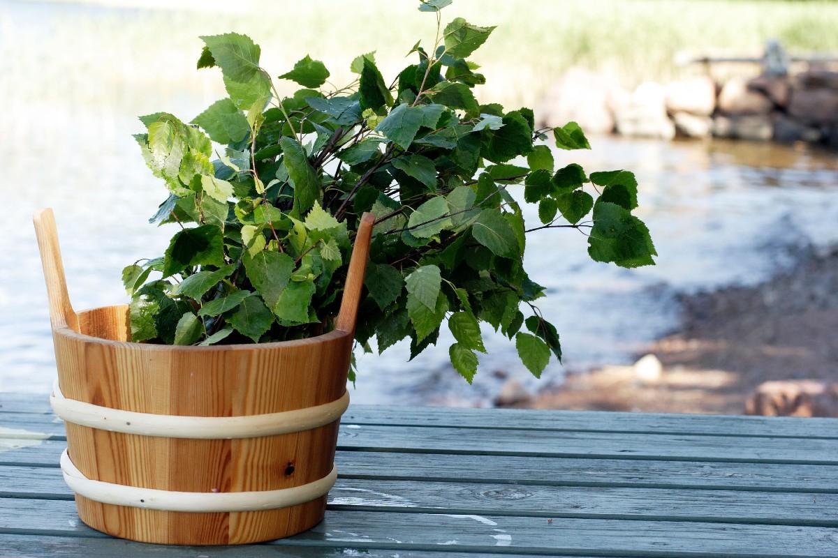 フィンランド式サウナに行きたい人におすすめ|バスルームがフィンランドの森になる、「白樺の若葉」と「森の土」の香りのボディーソープ|OSMIA(オスミア)