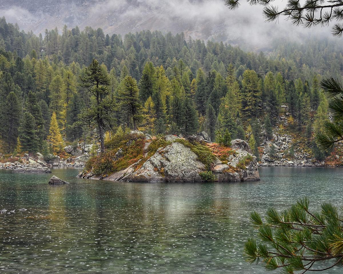 自然の音には、私たちの体をリラックスさせる効果がある。フワッと広がる穏やかな水流。植物にやさしい、繊細な雨のような自然な水流のジョウロ|Royal Gardeners Club
