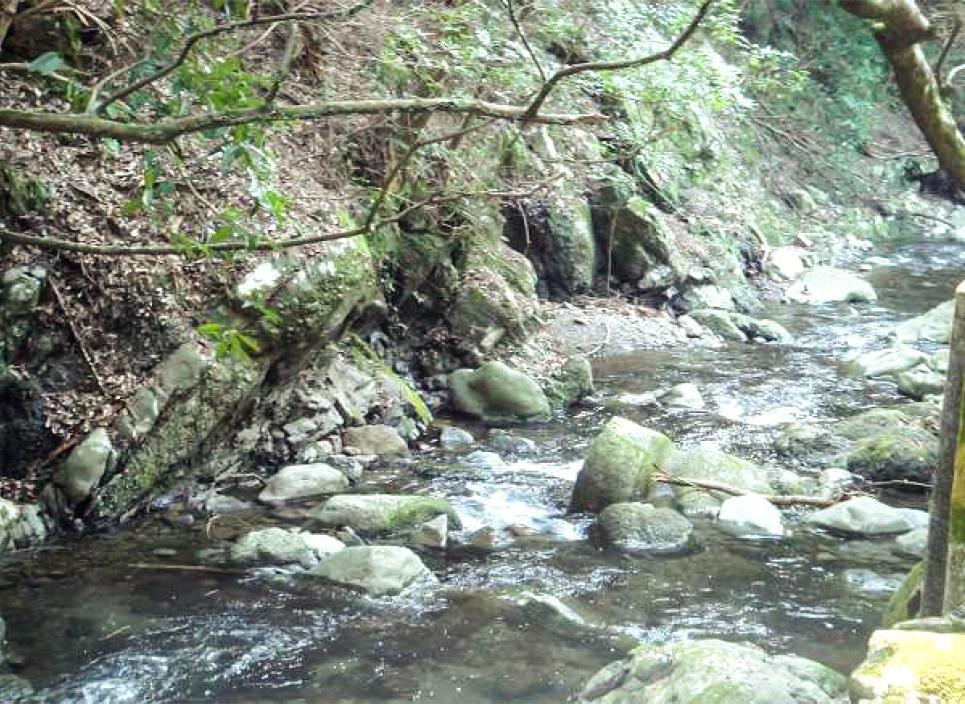 豊かな水資源に恵まれている大阪・泉州地域。「熟睡」を追求した凹凸状のハニカム織りのハニカムケット(ワッフルケット)