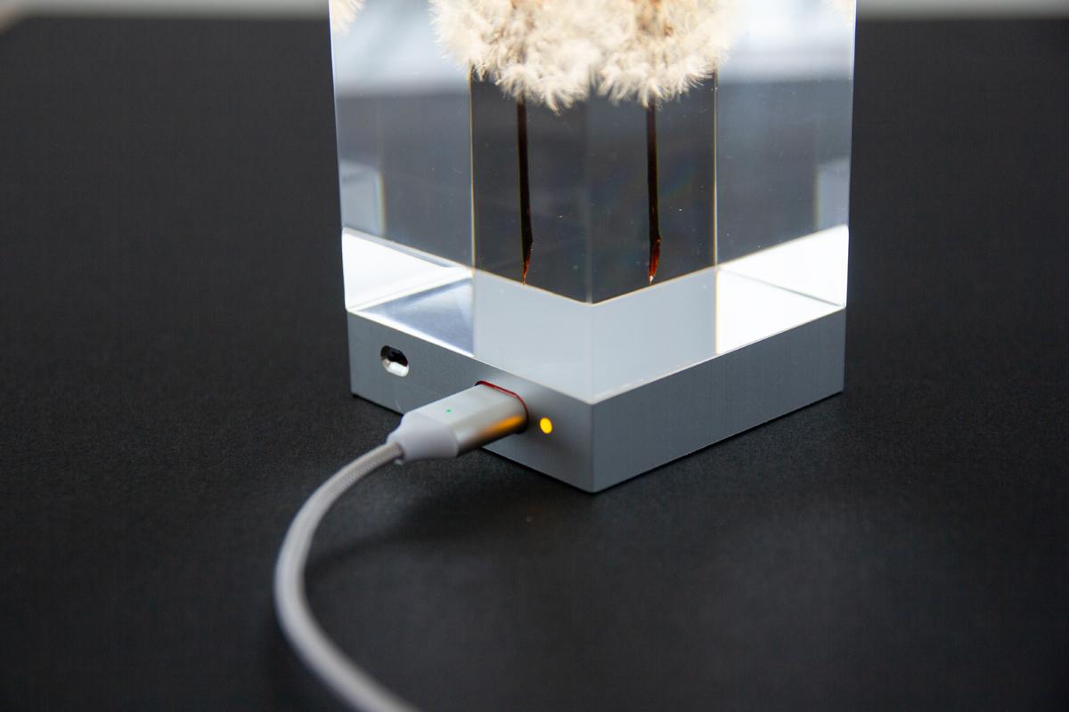 たんぽぽの表情が楽しめるゆらぎ照明のアクリルオブジェ | OLED TAMPOPO LIGHT by TAKAO INOUE