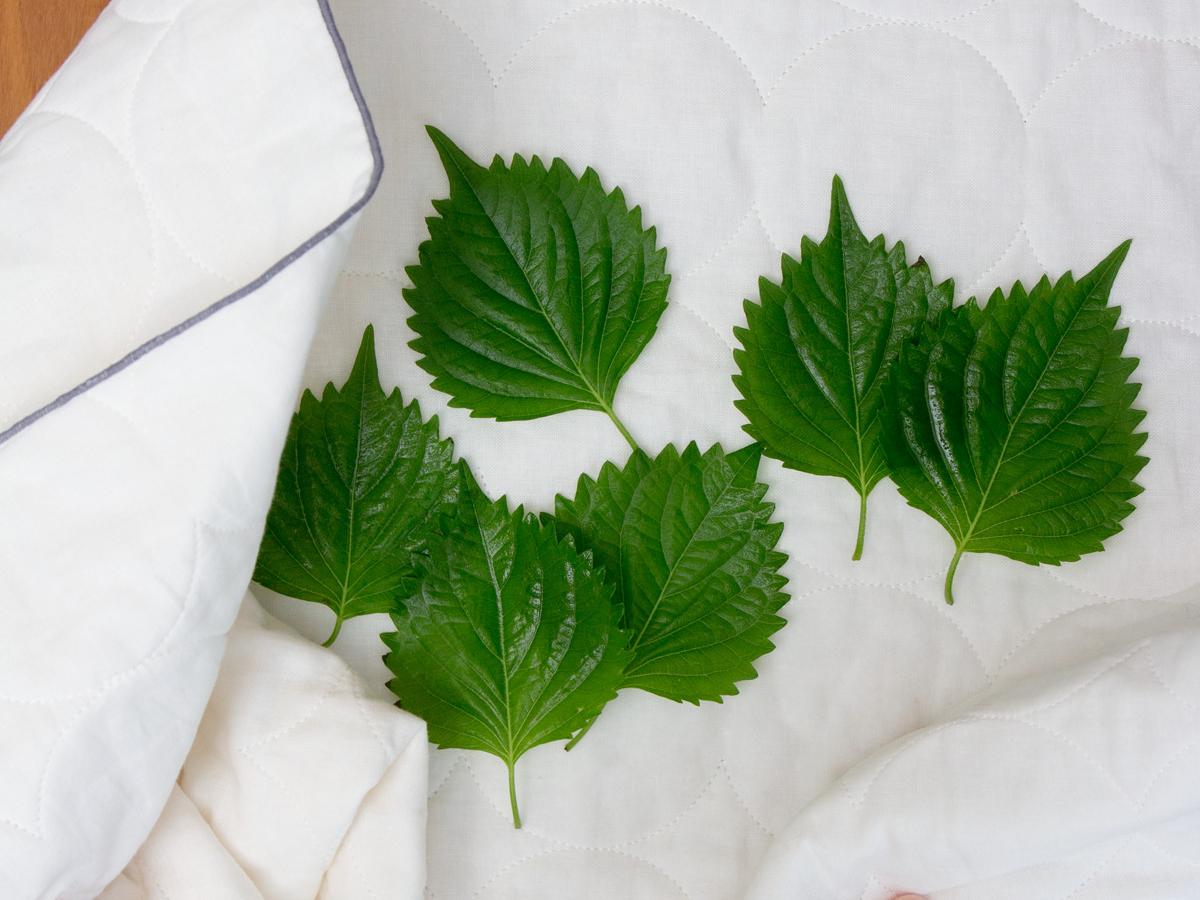 野菜の水切り|3層構造の綿が水分を一発で掴む!吸水・速乾性に優れた、毛羽がつかない「キッチンふきん」| YARN HOME