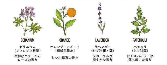 心身を優しく満たしてくれるイメージの香り。ほんのり甘いオレンジやゼラニウム、落ち着いたラベンダーやパチュリを中心に、天然のオイルをブレンドしている全身シャンプー|『MANGETSU(満月)』『SHINGETSU(新月)』Jam Label(ジャムレーベル)