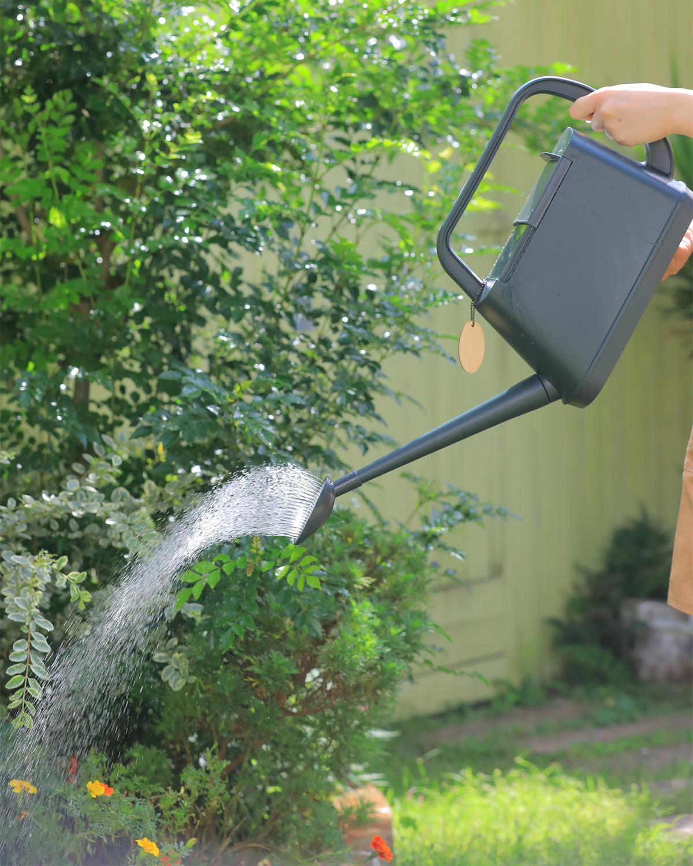 水やりそのものが楽しくなるから、水やりセラピーになる。植物にやさしい、繊細な雨のような自然な水流のジョウロ|Royal Gardeners Club