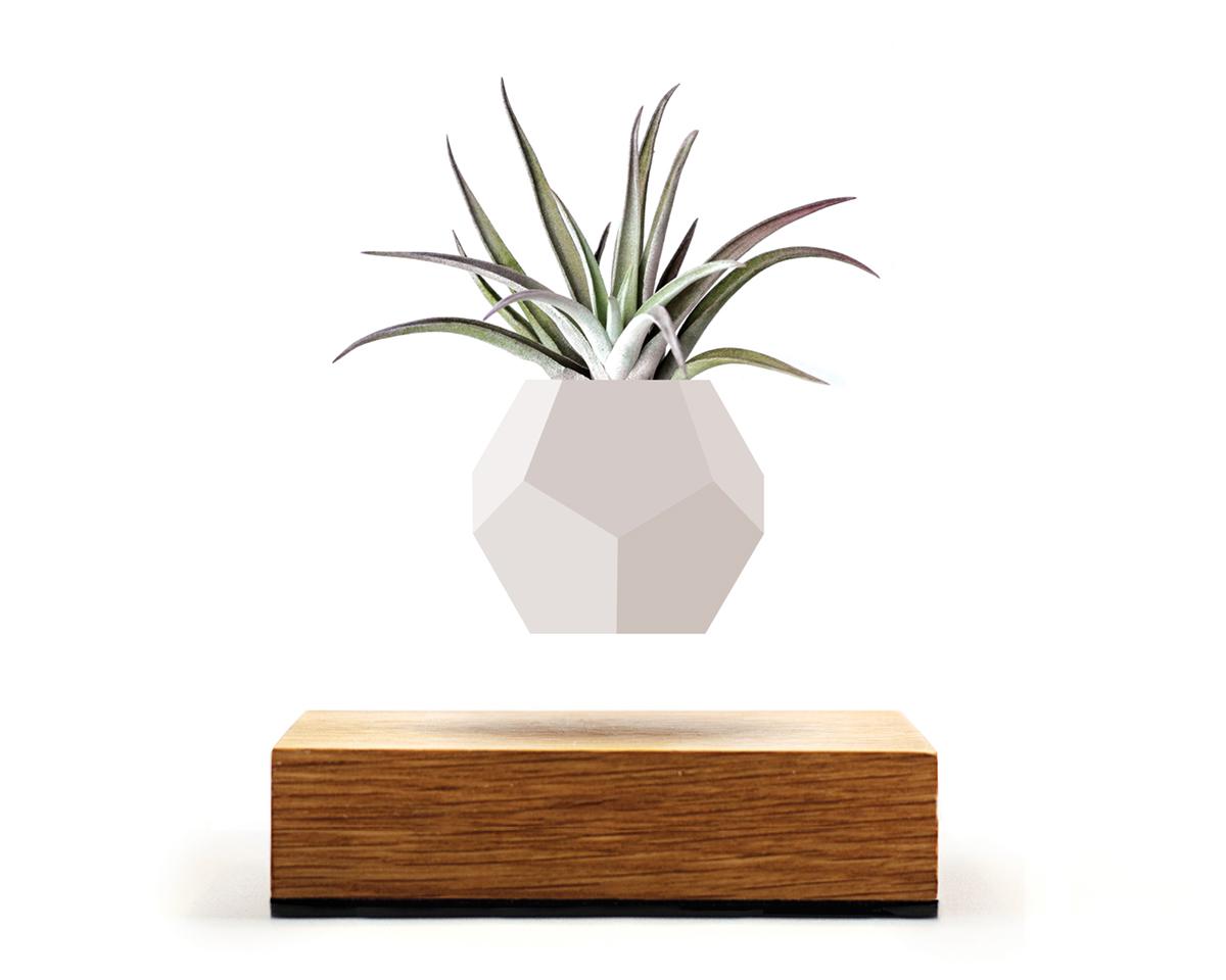 磁力で宙に浮き回転する植物プランター(ハリシー) | LYFE