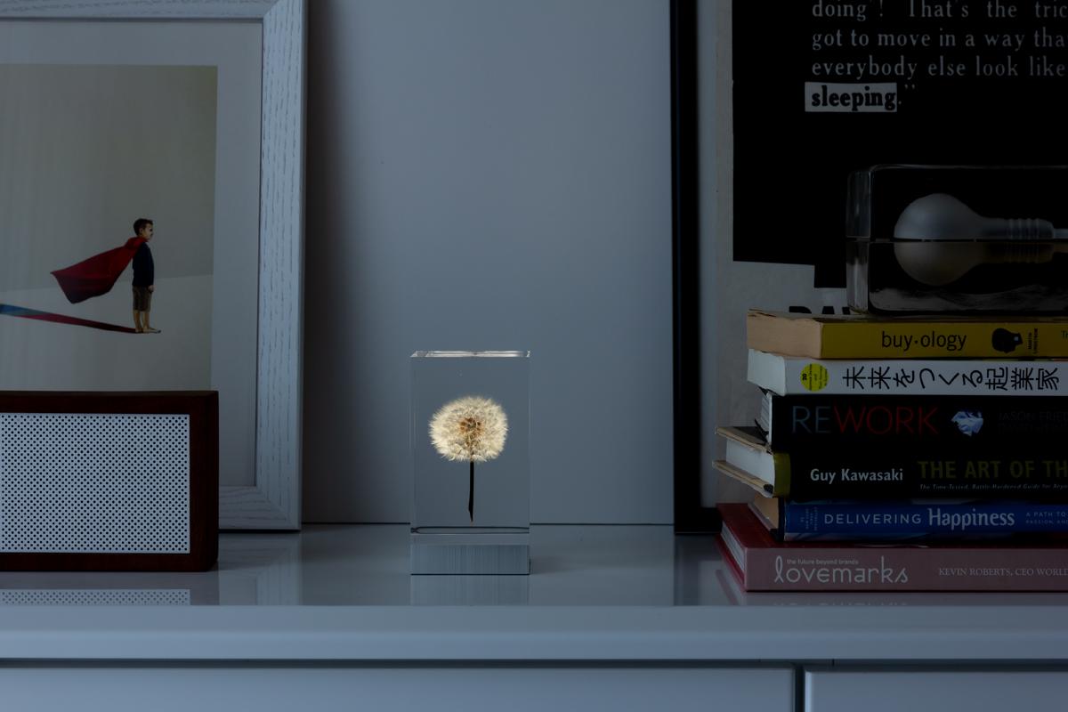 耐久性が高く、ガラスのように透明なアクリルオブジェ | OLED TAMPOPO LIGHT by TAKAO INOUE
