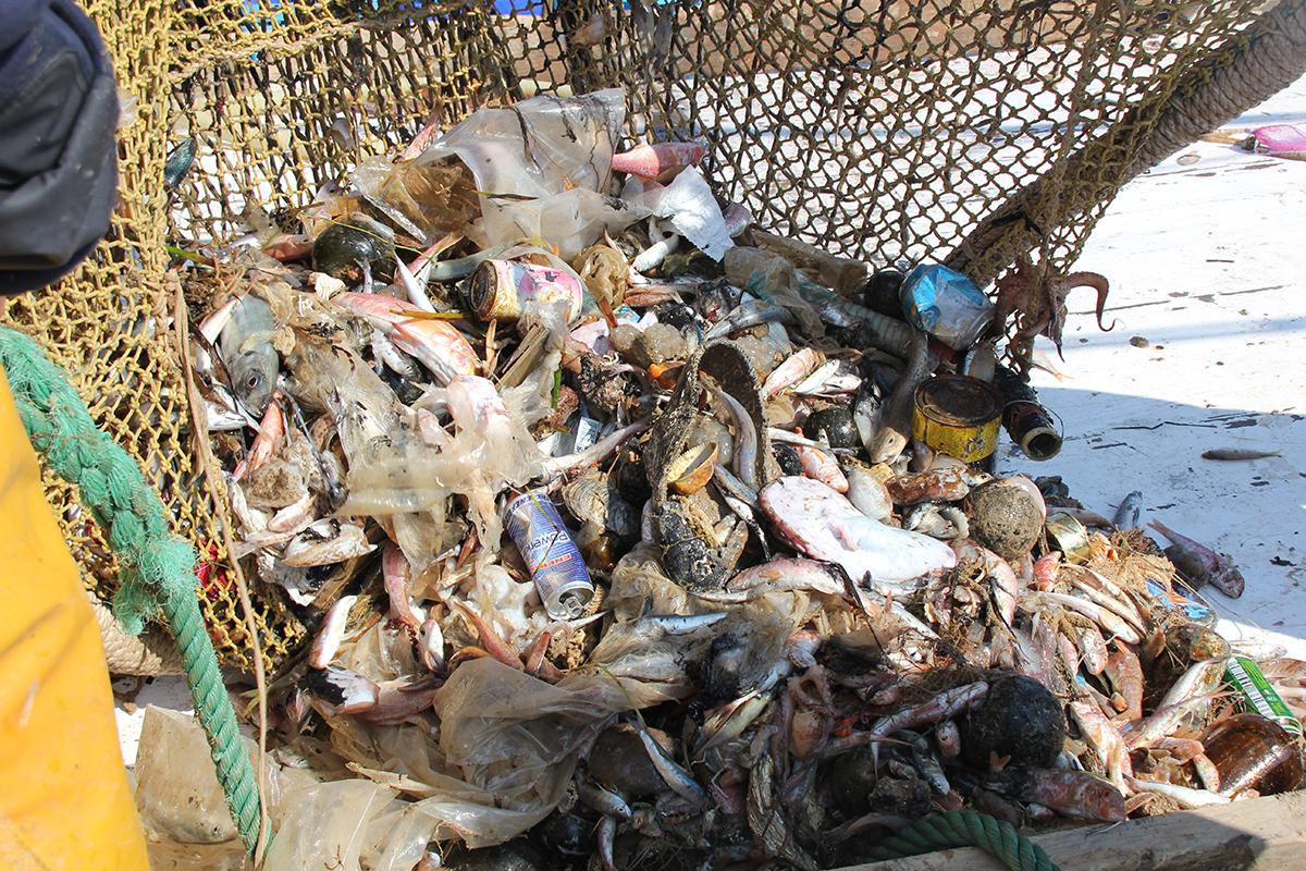 じつは、この海洋ごみの多くは、私たちが暮らす街に捨てられたごみが、風や水路、川によって海へと運ばれているのです。海底から救い出されたゴミが、繊維に生まれ変わる!再生素材を使った、これからの「サステナブルスニーカー」|ECOALF