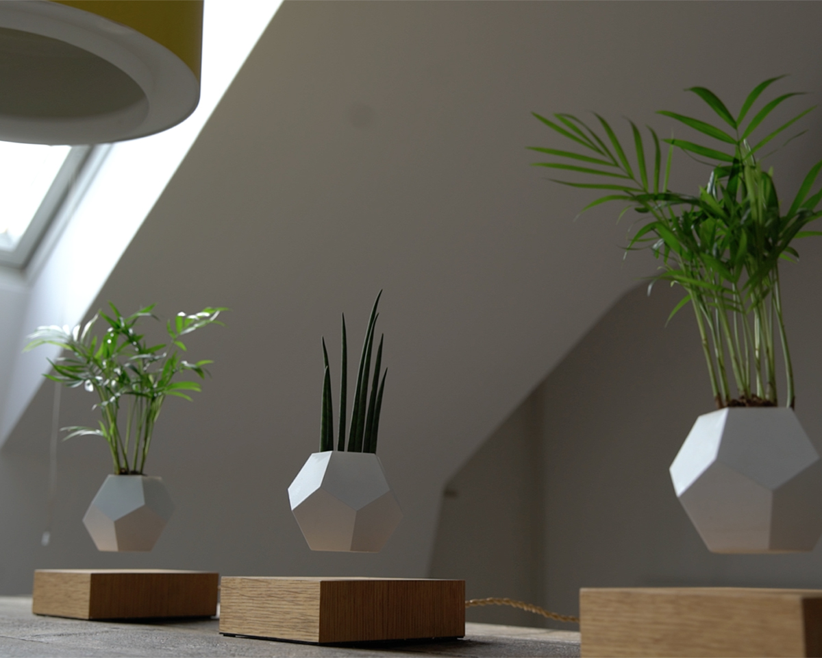 磁力で宙に浮き回転する植物プランター | LYFE