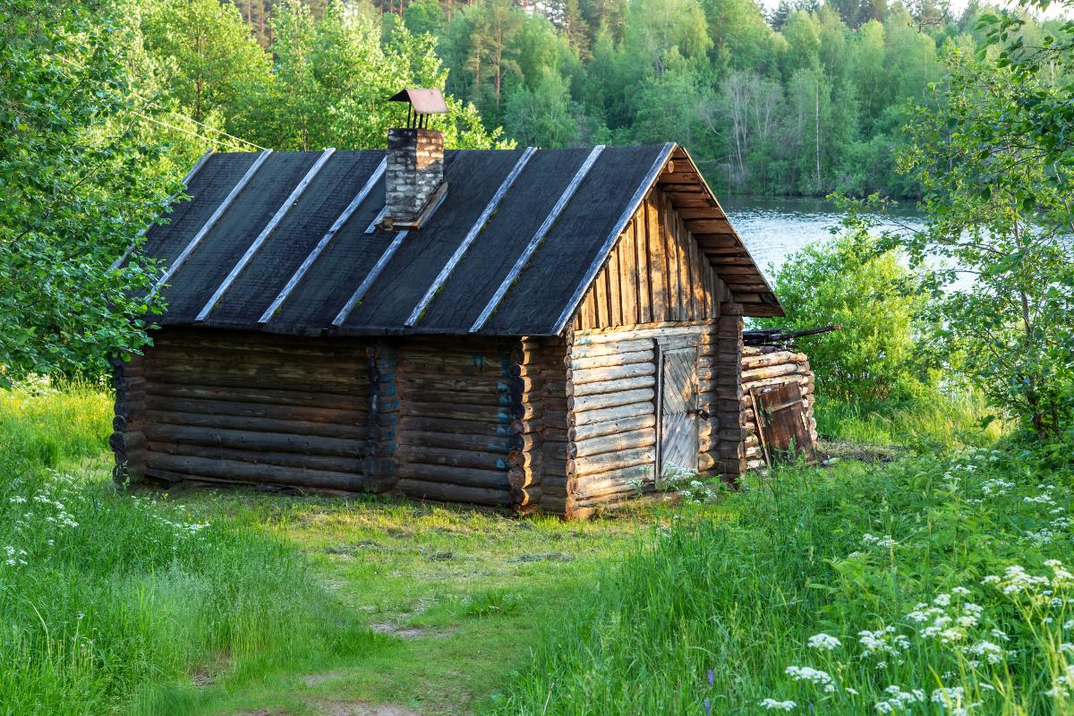 白樺」は幸せの国フィンランドの国樹|バスルームがフィンランドの森になる、「白樺の若葉」と「森の土」の香りのボディーソープ|OSMIA(オスミア)