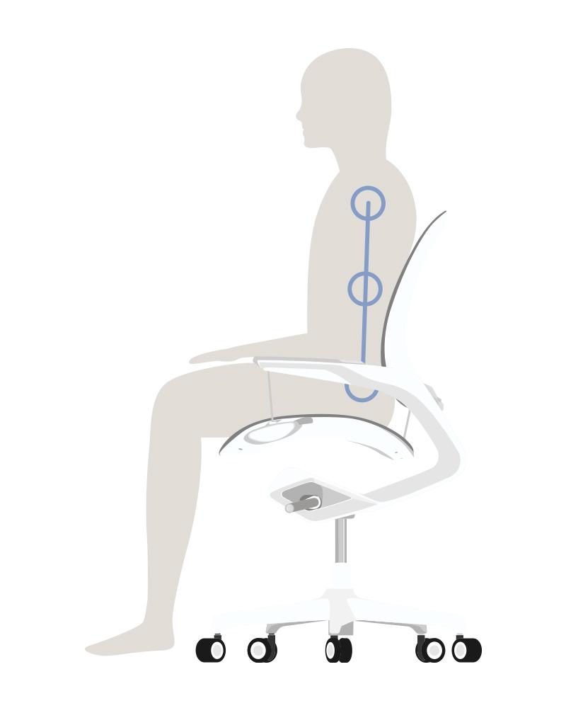 腰を正しく支える立体バックレスト1-意識しないで、いつでも「気持ちいい仕事姿勢」が続く!座面が動くワーキングチェア|Elea Chair