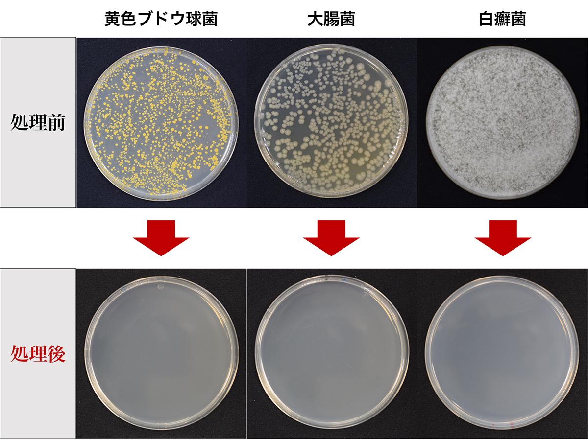 有害物質をゼロに。「水銀を使わないUVランプ」で、菌をここまで除菌。日本初、特許のUVランプでウイルス・菌を不活化させる「オゾン発生器・間接照明ランプ」|RoomiAir