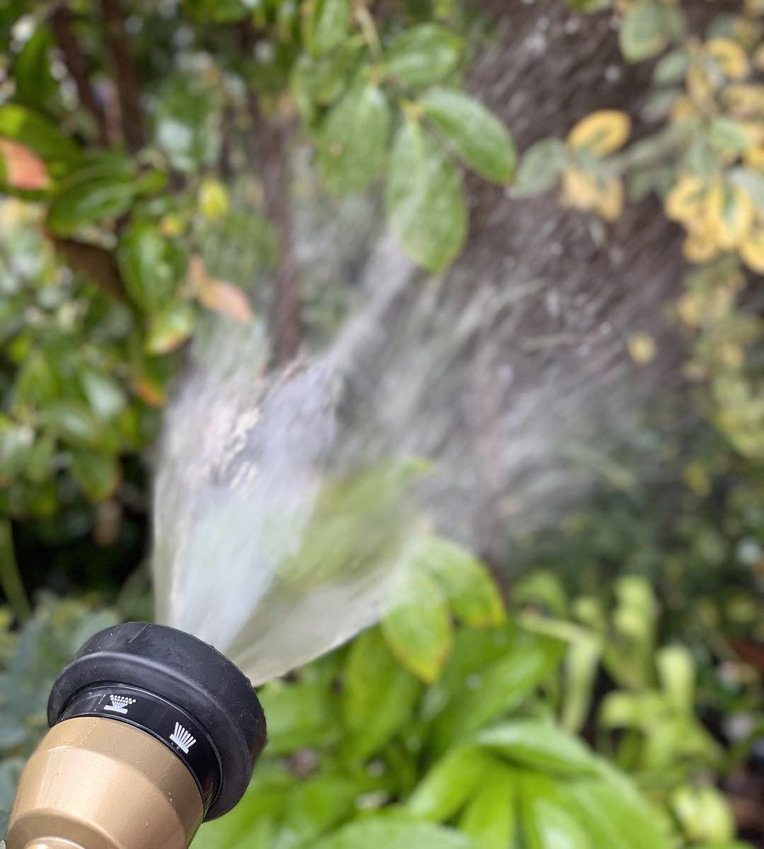 使い勝手も◎。4種のシャワーで、庭の水やりも、ベランダや車の掃除も自在。あなたの理想の庭を仕上げてくれる「ホースリール」|Royal Gardeners Club(ロイヤルガーデナーズクラブ)