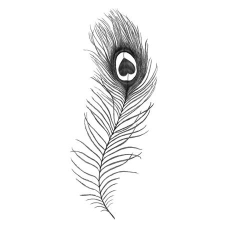 Inkwear Tattoos|Tattoo風シール/クジャクの羽|