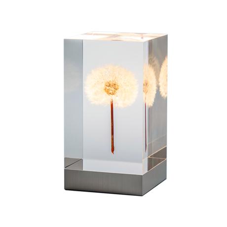 """手のひらの『たんぽぽ美術館』 未来の光源が包み込む幻想空間。生花の""""たんぽぽ""""を閉じ込めたアクリルオブジェ   OLED TAMPOPO LIGHT by TAKAO INOUE"""