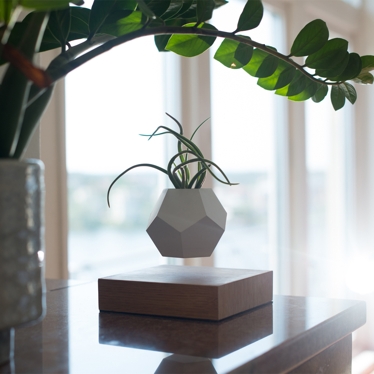 """物体が浮遊する""""ワクワク・ロマン"""" 磁力で宙に浮くLED電球 & 植物プランター"""