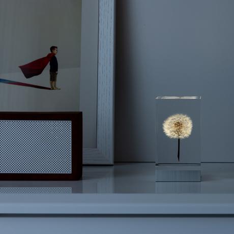 手のひらの『たんぽぽ美術館』|未来の光源が包み込む、美しいアクリルオブジェ
