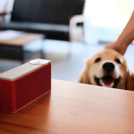 おしゃれで高音質、おすすめ Bluetoothスピーカー8選